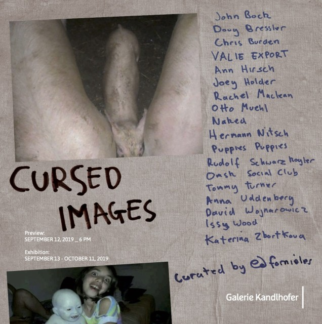 'Cursed Images' curated by Ed Fornieles