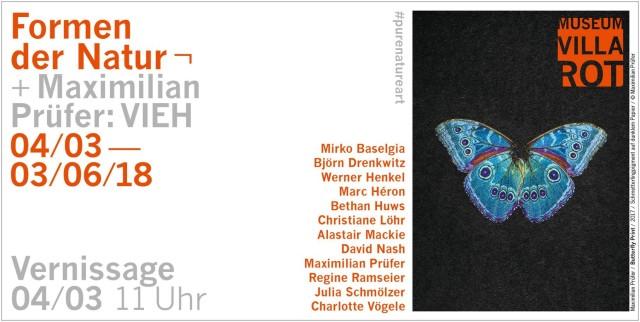 Maximilian Prüfer/ Butterfly Print/ 2017/ Schmetterlingpigment auf dunklem Papier/