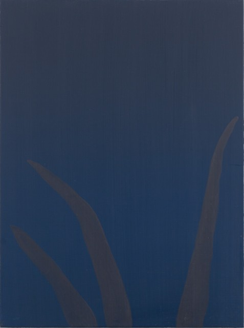 This painting may just look like a dark blue background at first glance. However up close you can see that there is large grass colored in a dark shade of red.