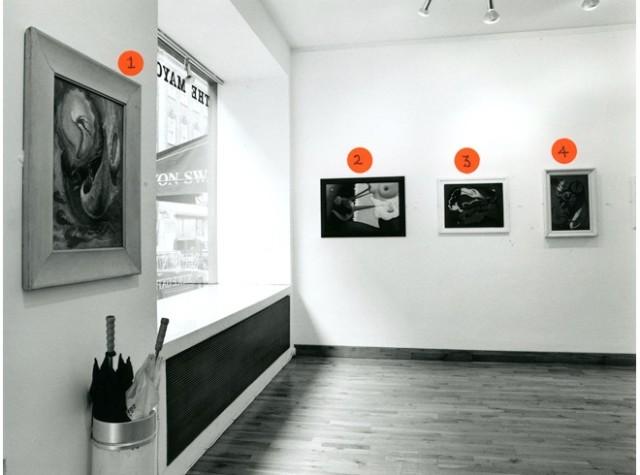 REUBEN MEDNIKOFF & DR GRACE PAILTHORPE Installation View