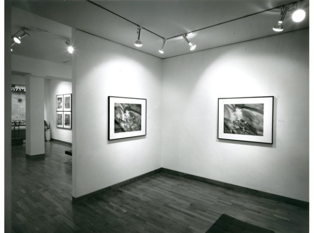 LINDA MCCARTNEY Installation View