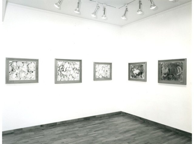 HAROLD SHAPINSKY Installation View