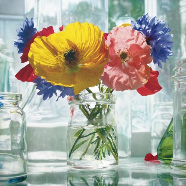 Paintings in Bloom