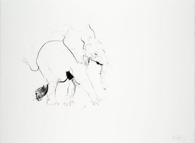 Baby Elephant II, 2013