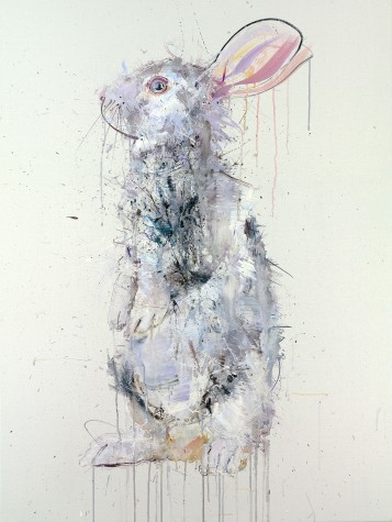 Rabbit IV