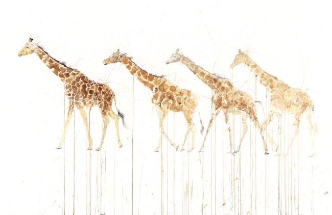 Giraffe Movement