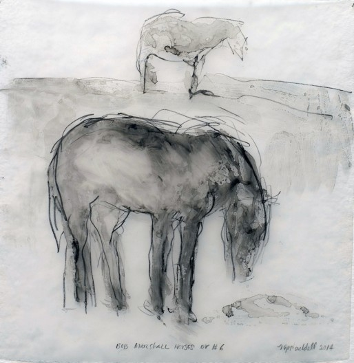 <span class=%22title%22>Bob Marshall Horses Dr #6</span>