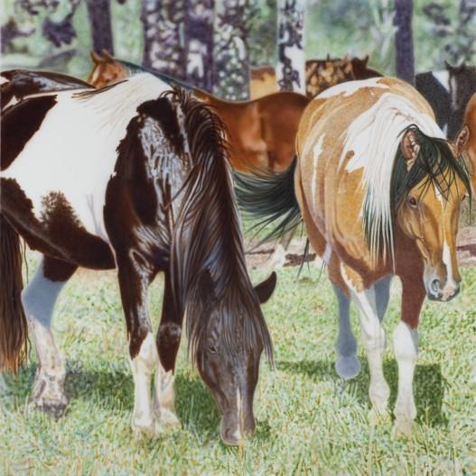 <span class=%22title%22>Resor's Ponies</span>