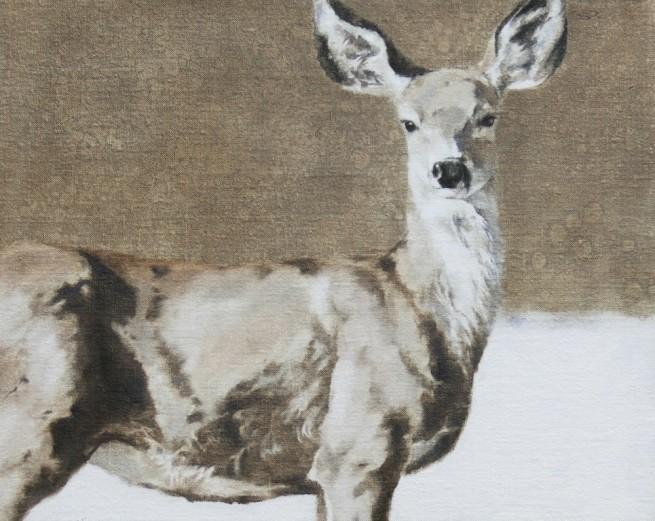 Deer Run Wonder