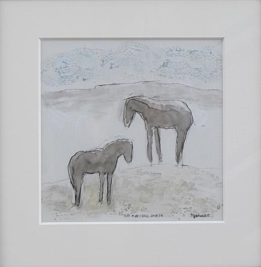 Bob Marshall Horses Dr. #14