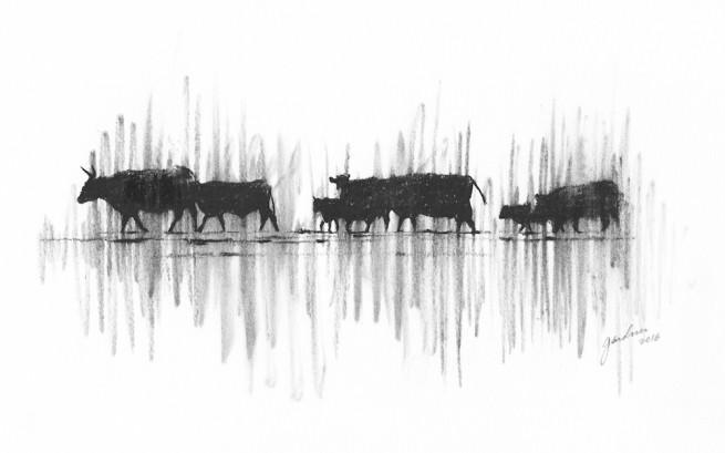 Herd on the Ridge