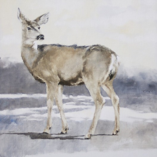 Deer Run Aquinas