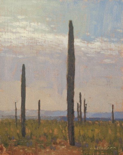 Tall Saguaro with Distant Hills