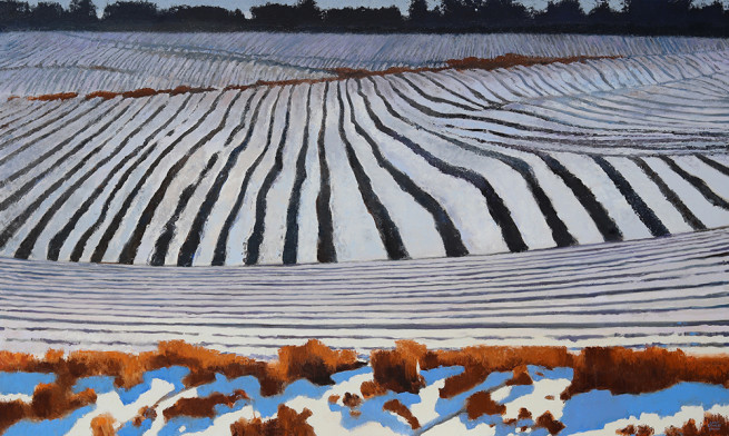 Gary Ernest Smith, Field in Snow