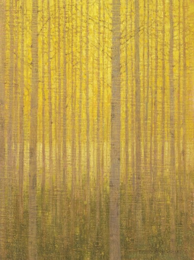 In the Autumn Aspen Grove