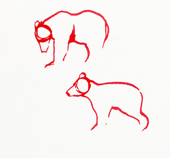 Red Bear 21