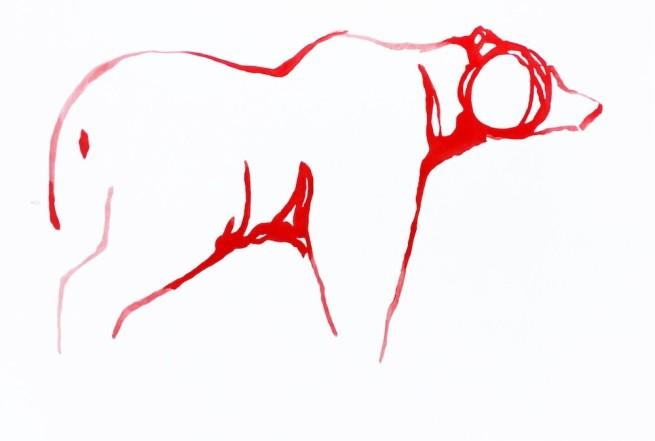 Red Bear 13