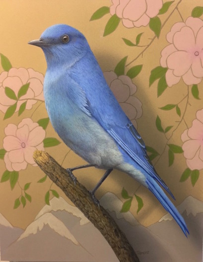 Tom Palmore, Mountain Bluebird