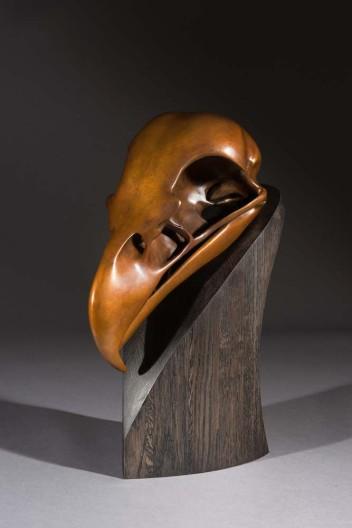 Simon Gudgeon, Bald Eagle Skull, Ed. V/XXV