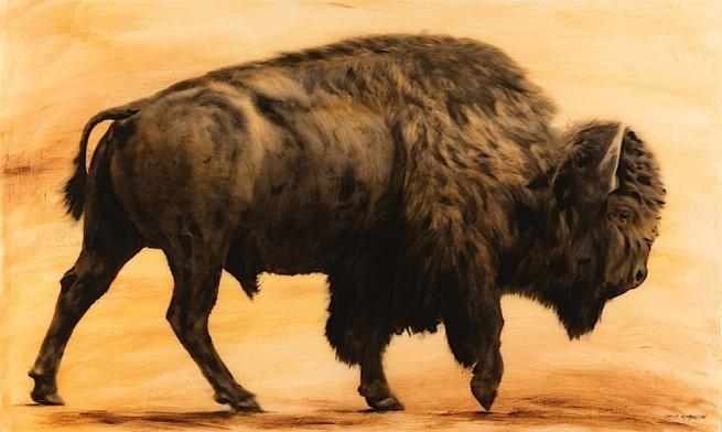 Simon Gudgeon, Bison