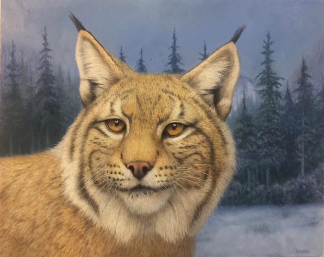 Tom Palmore, Lynx