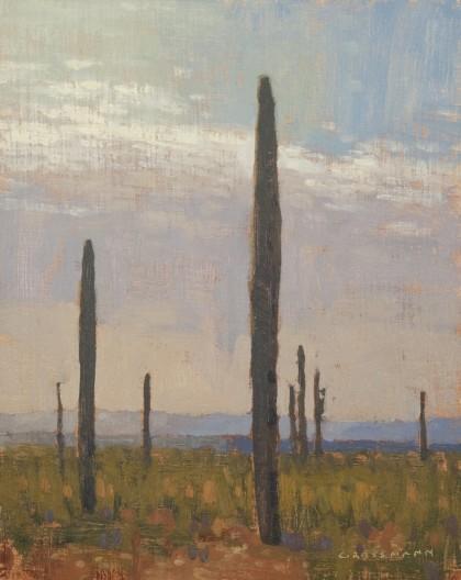 David Grossmann, Tall Saguaro with Distant Hills