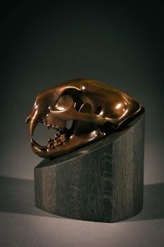 Simon Gudgeon, Cougar Skull, Ed. IV/XXV
