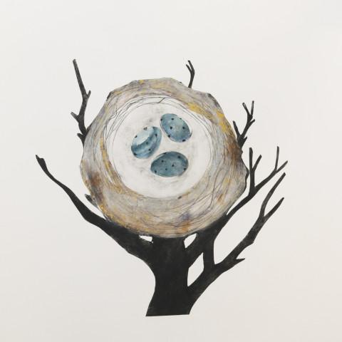 Beatrice Forshall, Mistle Thrush Nest