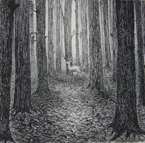 Flora McLachlan, A Forest
