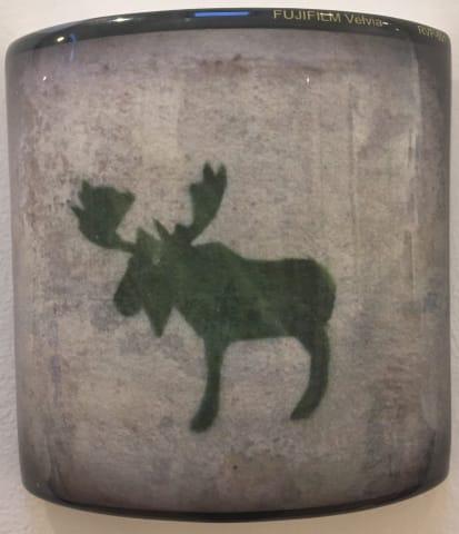David Rhys Jones, Moose