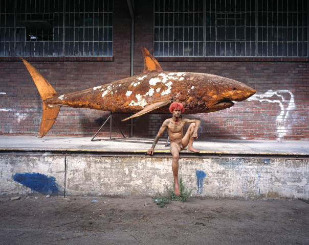 Gordon Clark, Fish out of Water, 2013