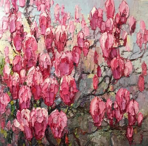 Magnolia, Magenta