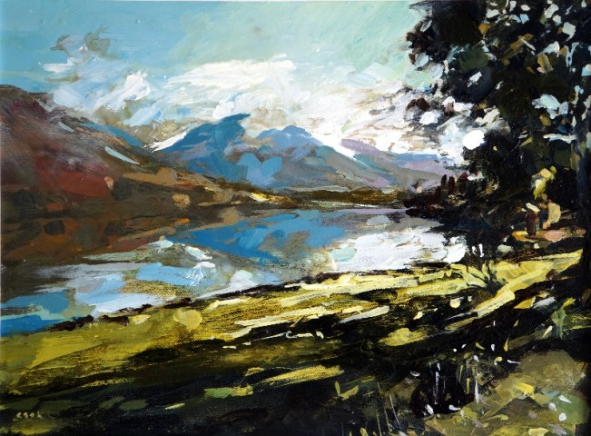 Colin Cook, Lowes Water from the Forest Path
