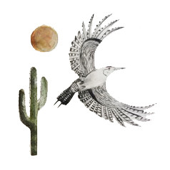 Beatrice Forshall, Gila Woodpecker