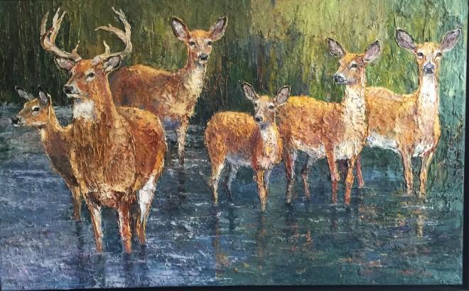 Red Deer, Richmond Park II