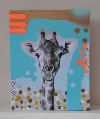 Harry (Giraffe)