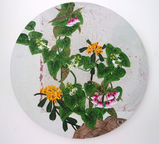 Jessica Holmes, Perpetual Spring, Heart-leaved Poison