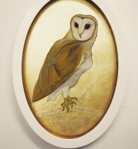 Sally-Ann Johns, Barn Owl
