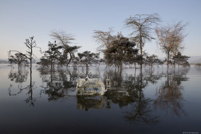 Hippos and Fever Trees, Dawn