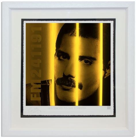 Freddy Mercury / Life Series