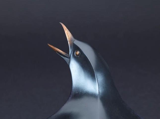 Sunbathing Blackbird