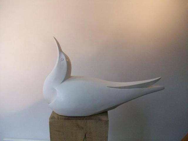 Paul Harvey, Tern