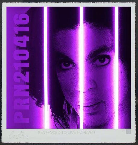 Prince / Life Series