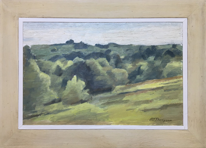 Alan James Thompson, Hillside with Bushes, 2018
