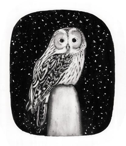 Beatrice Forshall, Tawny Owl (Unframed)