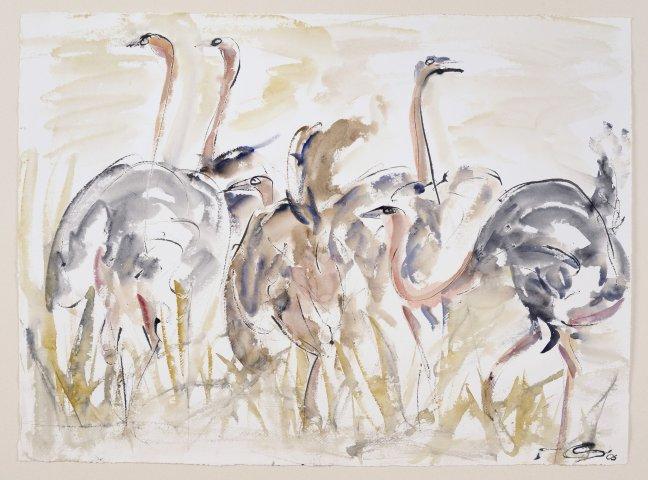 Christine Seifert, Ostriches (Unframed) (Hungerford Gallery)