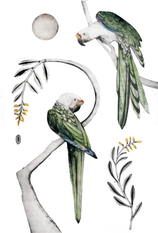 Beatrice Forshall, Great Green Macaws II