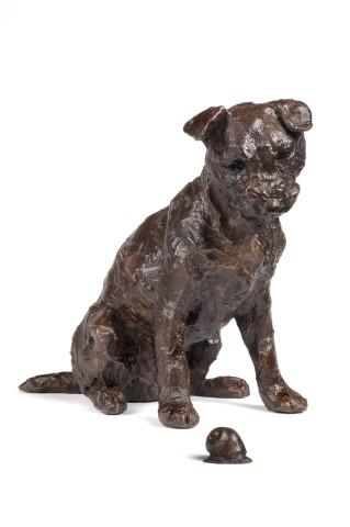 Rosemary Cook, Jaxon - Border terrier