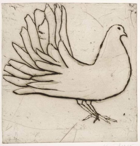 Kate Boxer, Fantail Dove (Mounted)