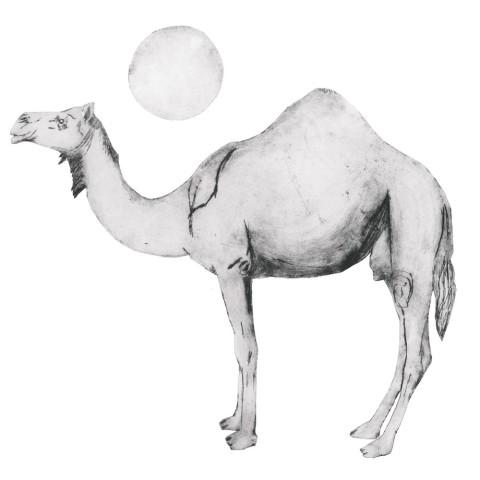 Beatrice Forshall, Camel Black and White (Unframed)
